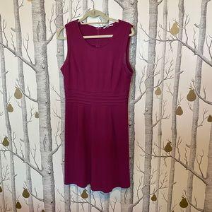 41 Hawthorn Dress in L stitch fix